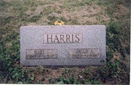 HARRIS, JACOB ASBURY - Meigs County, Ohio | JACOB ASBURY HARRIS - Ohio Gravestone Photos