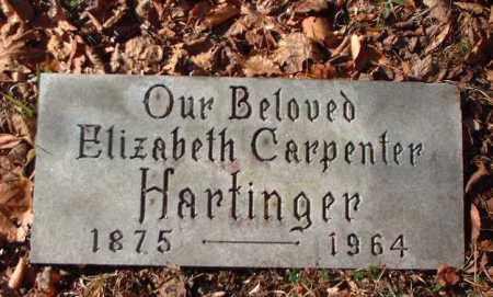 HARTINGER, ELIZABETH - Meigs County, Ohio | ELIZABETH HARTINGER - Ohio Gravestone Photos