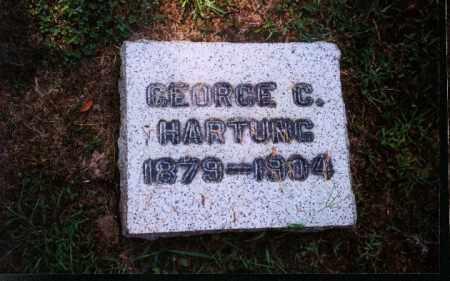 HARTUNG, GEORGE C. - Meigs County, Ohio   GEORGE C. HARTUNG - Ohio Gravestone Photos