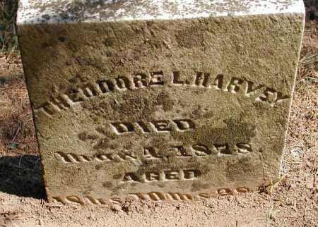HARVEY, THEODORE L. - Meigs County, Ohio   THEODORE L. HARVEY - Ohio Gravestone Photos
