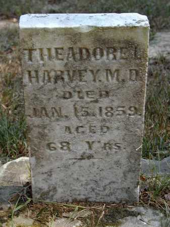 HARVEY, THEADORE L. - Meigs County, Ohio | THEADORE L. HARVEY - Ohio Gravestone Photos