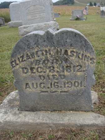 HASKINS, ELIZABETH - Meigs County, Ohio   ELIZABETH HASKINS - Ohio Gravestone Photos