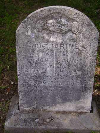 HAUN, CATHARINE - OVERALL VIEW - Meigs County, Ohio   CATHARINE - OVERALL VIEW HAUN - Ohio Gravestone Photos