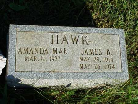 HAWK, AMANDA MAE - Meigs County, Ohio | AMANDA MAE HAWK - Ohio Gravestone Photos