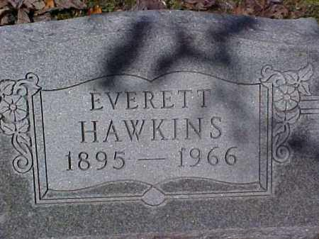 HAWKINS, EVERETT - Meigs County, Ohio | EVERETT HAWKINS - Ohio Gravestone Photos