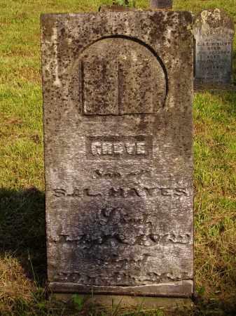 HAYES, GROVE - Meigs County, Ohio | GROVE HAYES - Ohio Gravestone Photos