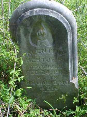 HERTJE, VALENTINE, SR. - Meigs County, Ohio | VALENTINE, SR. HERTJE - Ohio Gravestone Photos