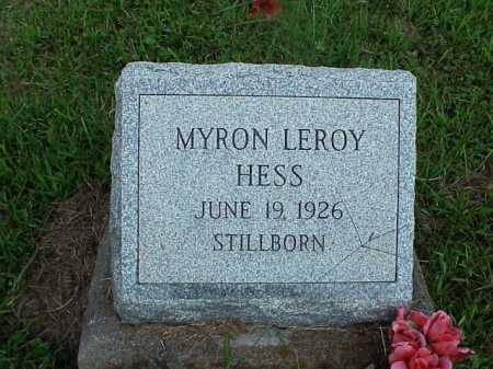 HESS, MYRON LEROY - Meigs County, Ohio | MYRON LEROY HESS - Ohio Gravestone Photos