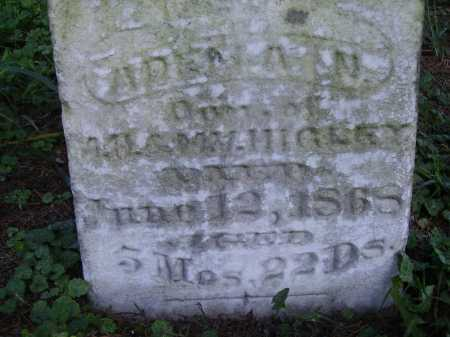 HIGLEY, ARDELLA N. - CLOSEVIEW - Meigs County, Ohio | ARDELLA N. - CLOSEVIEW HIGLEY - Ohio Gravestone Photos