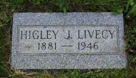 LIVECY, HIGLEY J. - Meigs County, Ohio   HIGLEY J. LIVECY - Ohio Gravestone Photos