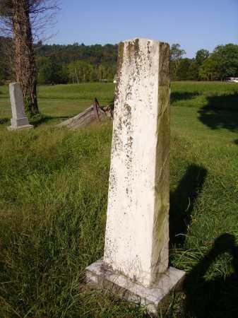 HIGLEY, L. SARDINE - BACK VIEW - Meigs County, Ohio | L. SARDINE - BACK VIEW HIGLEY - Ohio Gravestone Photos