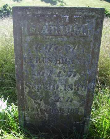 HIGLEY, MARIUM - OVERALL VIEW - Meigs County, Ohio | MARIUM - OVERALL VIEW HIGLEY - Ohio Gravestone Photos