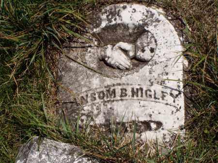 HIGLEY, RANSOM B. - Meigs County, Ohio   RANSOM B. HIGLEY - Ohio Gravestone Photos