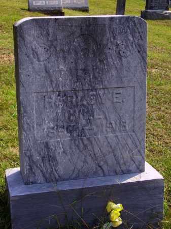 HILL, HARLEY E. - Meigs County, Ohio   HARLEY E. HILL - Ohio Gravestone Photos
