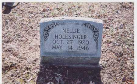 HOLESINGER, NELLIE - Meigs County, Ohio | NELLIE HOLESINGER - Ohio Gravestone Photos