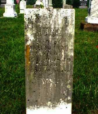 HOLLIDAY, JANE - Meigs County, Ohio | JANE HOLLIDAY - Ohio Gravestone Photos