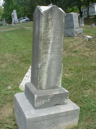 HOPKINS, D. F. - Meigs County, Ohio | D. F. HOPKINS - Ohio Gravestone Photos