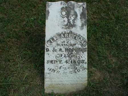 HOPKINS, ELIZABETH - Meigs County, Ohio | ELIZABETH HOPKINS - Ohio Gravestone Photos