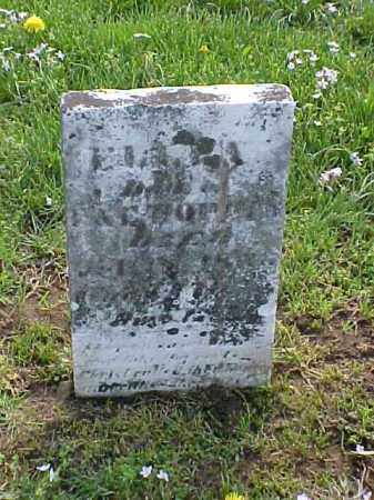 HOPPES, ELLEN - Meigs County, Ohio | ELLEN HOPPES - Ohio Gravestone Photos