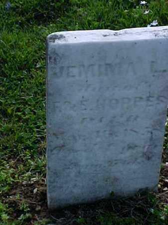 HOPPES, JEMIMA L. - Meigs County, Ohio | JEMIMA L. HOPPES - Ohio Gravestone Photos