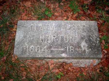 HORTON, CLARA - Meigs County, Ohio | CLARA HORTON - Ohio Gravestone Photos