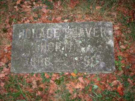 HORTON, HORACE SEAVER - Meigs County, Ohio | HORACE SEAVER HORTON - Ohio Gravestone Photos