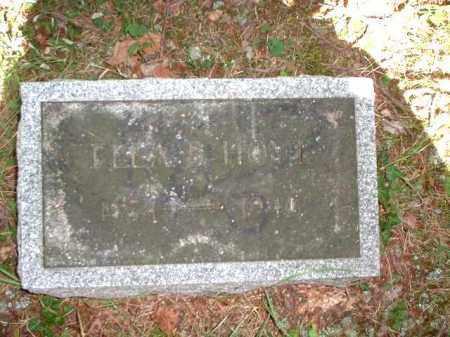 HOYT, ELLA B. - Meigs County, Ohio | ELLA B. HOYT - Ohio Gravestone Photos