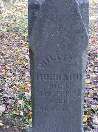HUBBARD [CLOSEVIEW], WILLIAM - Meigs County, Ohio | WILLIAM HUBBARD [CLOSEVIEW] - Ohio Gravestone Photos