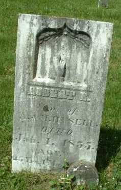 HYSELL, ROBERT - Meigs County, Ohio | ROBERT HYSELL - Ohio Gravestone Photos