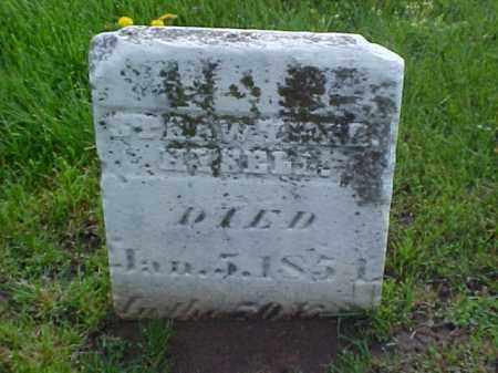 HYSELL, STRAWTHER - Meigs County, Ohio | STRAWTHER HYSELL - Ohio Gravestone Photos