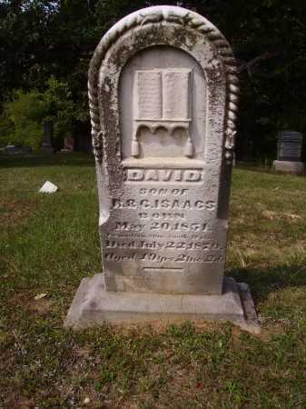 ISAACS, DAVID - Meigs County, Ohio | DAVID ISAACS - Ohio Gravestone Photos