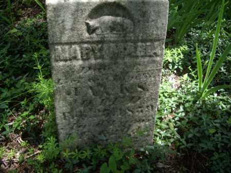 JACKS, MARY MARIA - Meigs County, Ohio | MARY MARIA JACKS - Ohio Gravestone Photos
