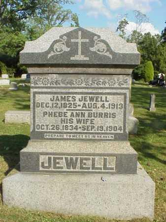 JEWELL, PHEBE ANN - Meigs County, Ohio   PHEBE ANN JEWELL - Ohio Gravestone Photos