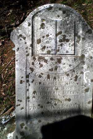 KALB JOACHIM, ELIZABETH - Meigs County, Ohio   ELIZABETH KALB JOACHIM - Ohio Gravestone Photos