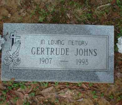 JOHNS, GERTRUDE - Meigs County, Ohio | GERTRUDE JOHNS - Ohio Gravestone Photos