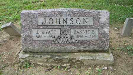 JOHNSON, FANNIE ESELDA - Meigs County, Ohio | FANNIE ESELDA JOHNSON - Ohio Gravestone Photos