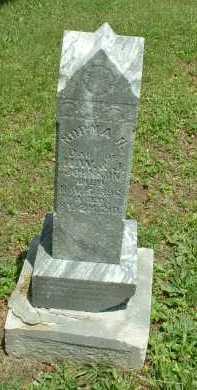 JOHNSON, NORMA - Meigs County, Ohio | NORMA JOHNSON - Ohio Gravestone Photos