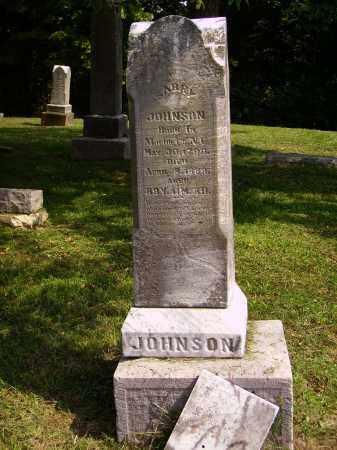 JOHNSON, SARRY - Meigs County, Ohio   SARRY JOHNSON - Ohio Gravestone Photos