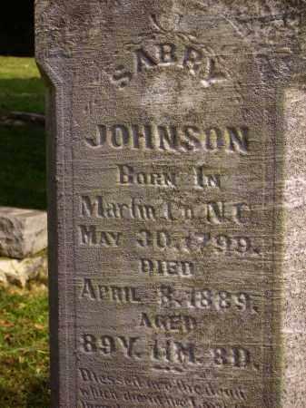JOHNSON, SARRY [CLOSE VIEW] - Meigs County, Ohio | SARRY [CLOSE VIEW] JOHNSON - Ohio Gravestone Photos