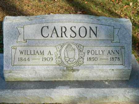 JOHNSON, POLLY ANN - Meigs County, Ohio | POLLY ANN JOHNSON - Ohio Gravestone Photos