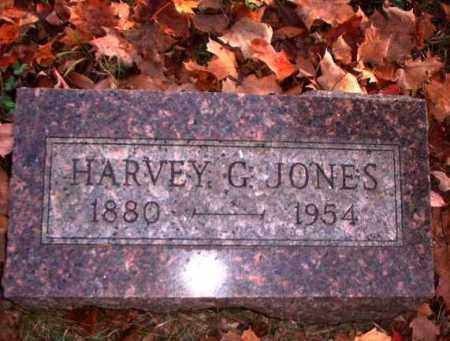 JONES, HARVEY G. - Meigs County, Ohio | HARVEY G. JONES - Ohio Gravestone Photos