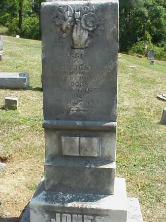 BARTELS JONES, MAGGIE - Meigs County, Ohio | MAGGIE BARTELS JONES - Ohio Gravestone Photos