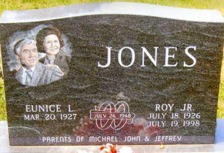 JONES, ROY JR. - Meigs County, Ohio | ROY JR. JONES - Ohio Gravestone Photos