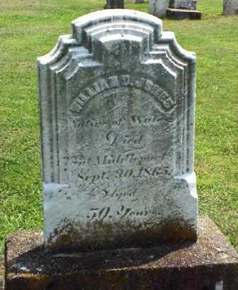 JONES, WILLIAM D. - Meigs County, Ohio | WILLIAM D. JONES - Ohio Gravestone Photos