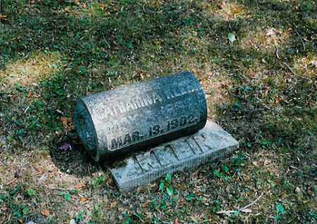 KLEIN, CATHARINA - Meigs County, Ohio   CATHARINA KLEIN - Ohio Gravestone Photos