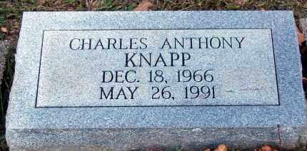 KNAPP, CHARLES - Meigs County, Ohio | CHARLES KNAPP - Ohio Gravestone Photos