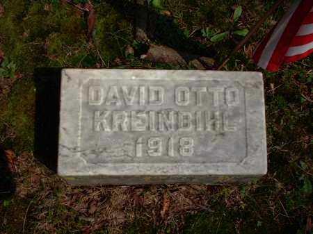 KREINBIHL, DAVID OTTO - Meigs County, Ohio | DAVID OTTO KREINBIHL - Ohio Gravestone Photos