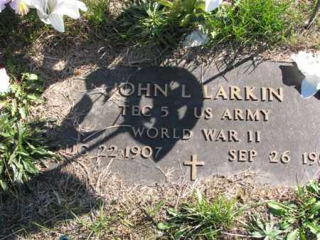 LARKIN, JOHN L. - Meigs County, Ohio   JOHN L. LARKIN - Ohio Gravestone Photos