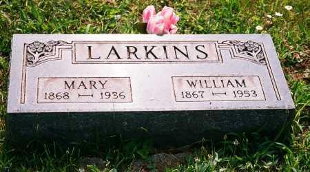 LARKINS, WILLIAM - Meigs County, Ohio | WILLIAM LARKINS - Ohio Gravestone Photos