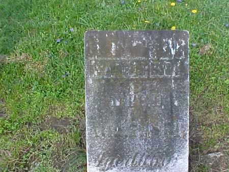 LARSON, ISAAC SR. - Meigs County, Ohio | ISAAC SR. LARSON - Ohio Gravestone Photos